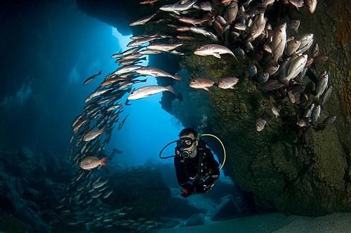 dean-diving-500