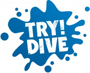 try dive logo general